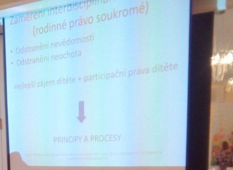 """Seminář """"Aplikace Cochemského modelu do praxe"""",  na Zámečku v Petrovicích."""